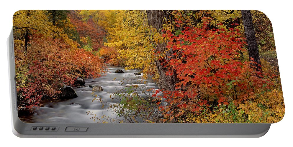Autumn Portable Battery Charger featuring the photograph Autumn Rapids by Leland D Howard