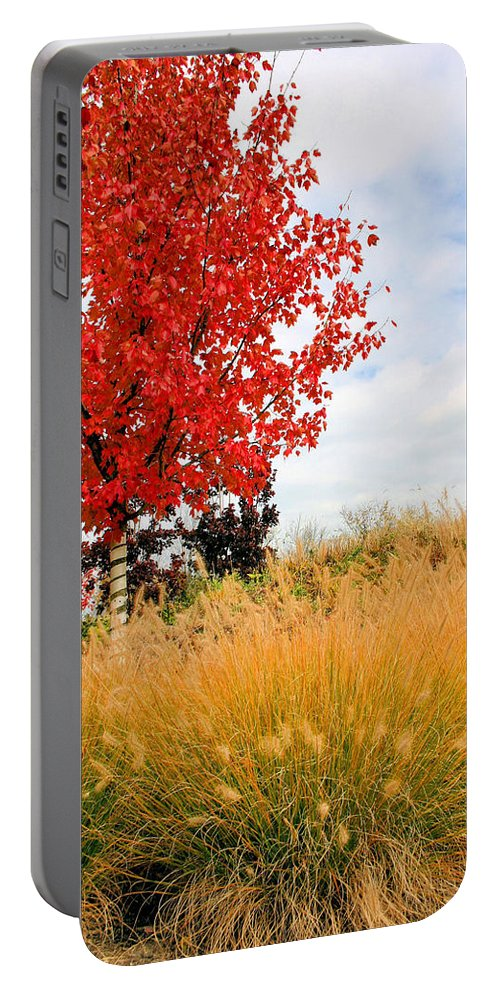 Maple Portable Battery Charger featuring the photograph Autumn Red Maple by Kristin Elmquist