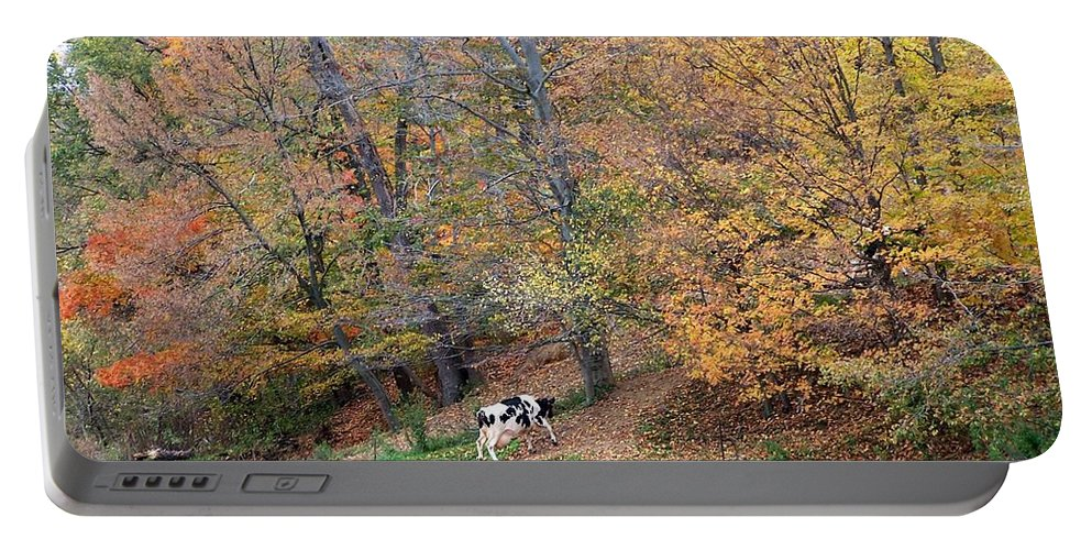 Autumn Portable Battery Charger featuring the photograph Autumn Reflections Cow Farm by Charlene Cox