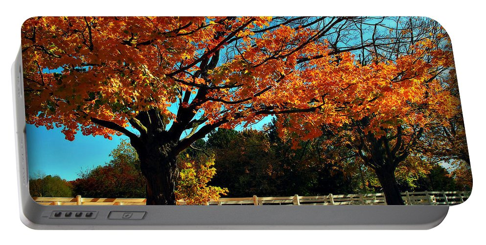 Autumn Portable Battery Charger featuring the photograph Autumn Rows by Joan Minchak