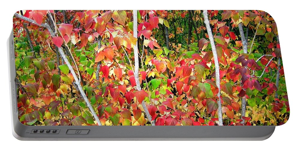 Autumn Portable Battery Charger featuring the photograph Autumn Sanctuary by Will Borden