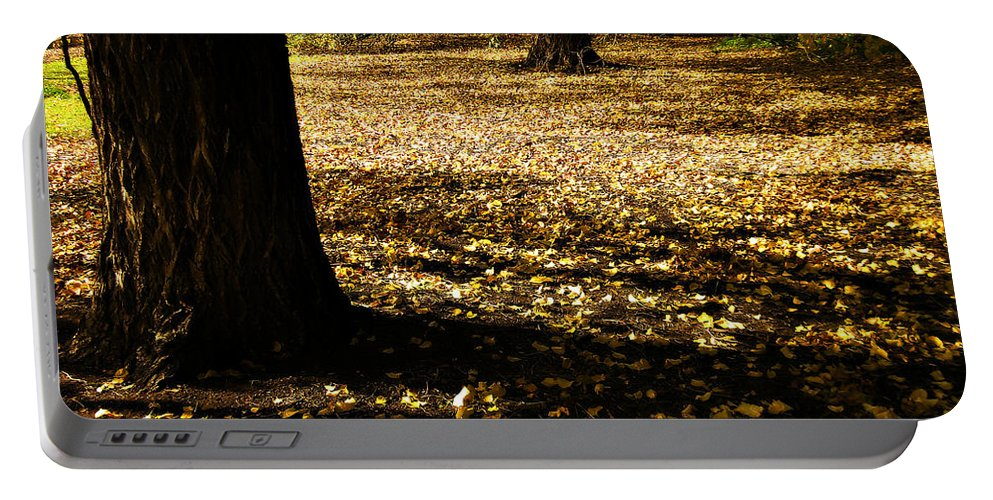 Trees Portable Battery Charger featuring the photograph Autumn Scatterlings by Douglas Barnard