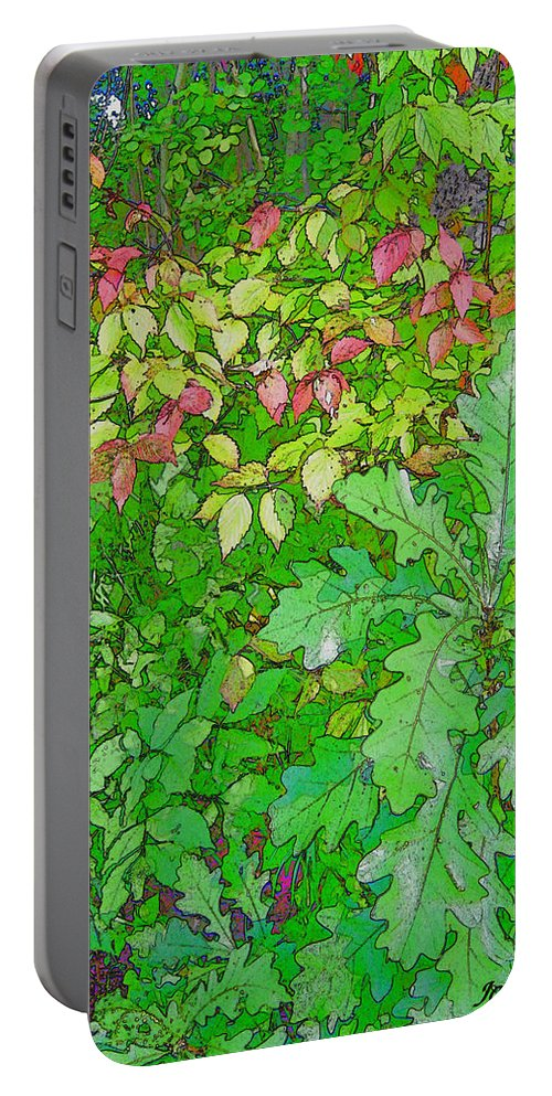 Leaves Portable Battery Charger featuring the photograph Autumn Splender by Joanne Smoley