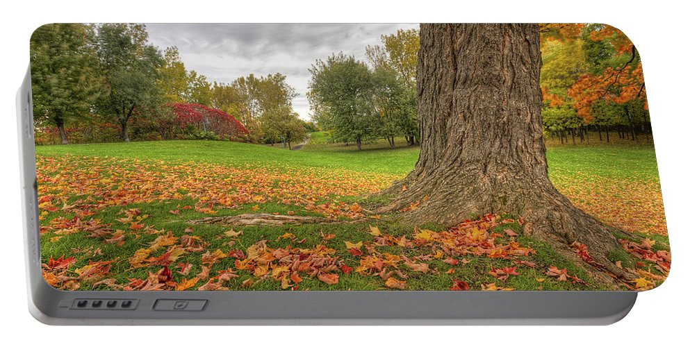 Autumn Portable Battery Charger featuring the photograph Autumn Tale by Mircea Costina Photography