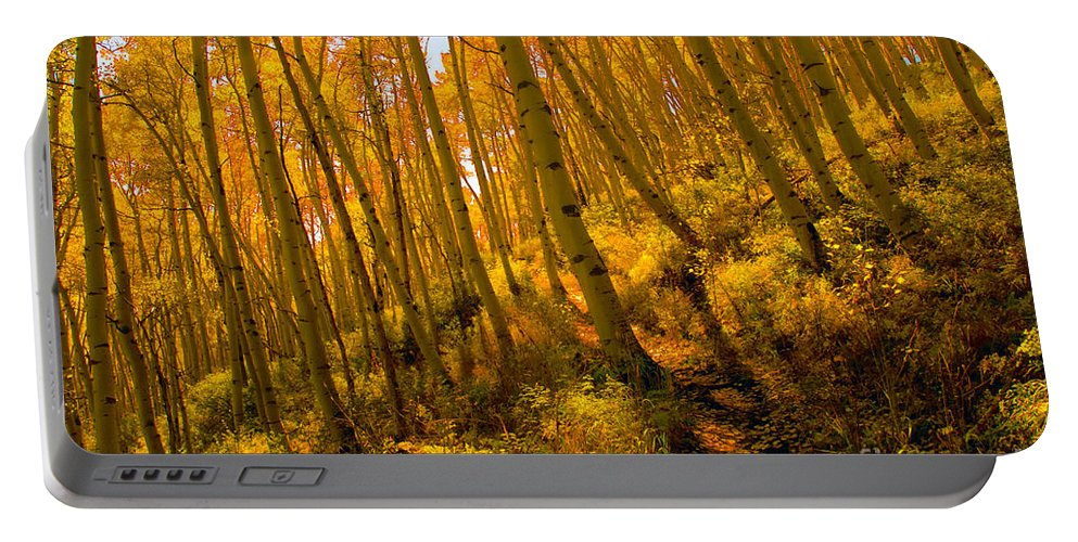 Autumn Portable Battery Charger featuring the photograph Autumn Trail by David Lee Thompson