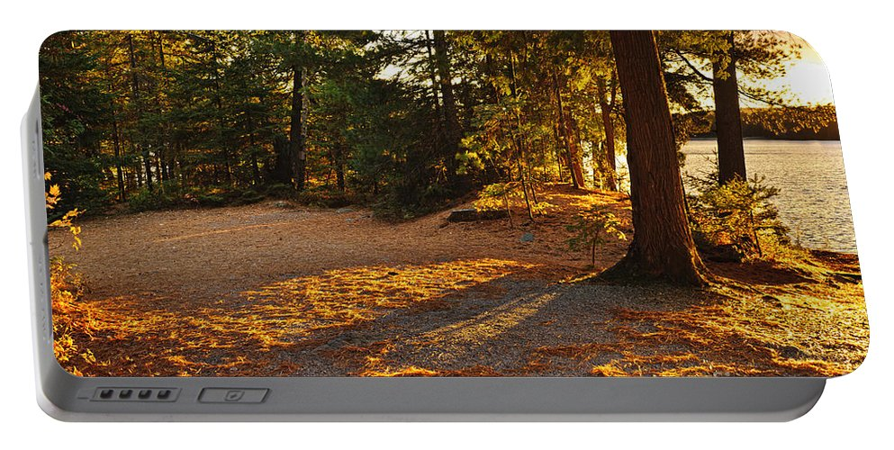 Trees Portable Battery Charger featuring the photograph Autumn Trees Near Lake by Elena Elisseeva