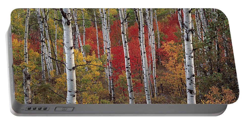 Autumn Portable Battery Charger featuring the photograph Autumn Warm by Leland D Howard