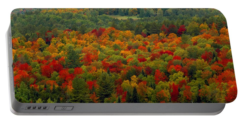 Autumn Portable Battery Charger featuring the painting Autumns Colors by David Lee Thompson