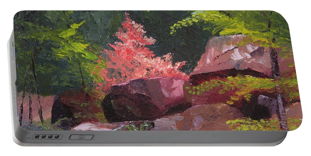 Azaleas Portable Battery Charger featuring the painting Azaleas - Sun And Shadow by Lea Novak