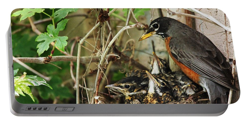 Robin Portable Battery Charger featuring the photograph Babes In The Nest by Debbie Oppermann