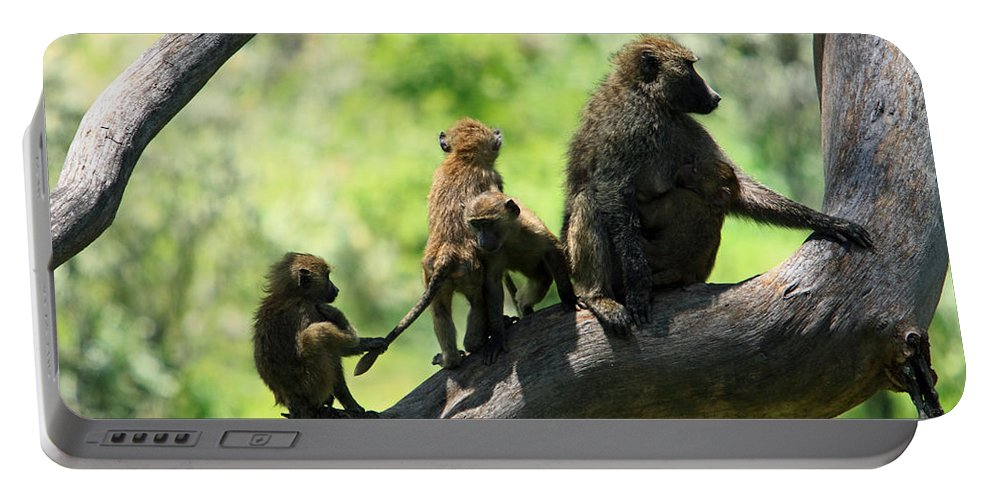 Baboon Portable Battery Charger featuring the photograph Baboon Family by Aidan Moran