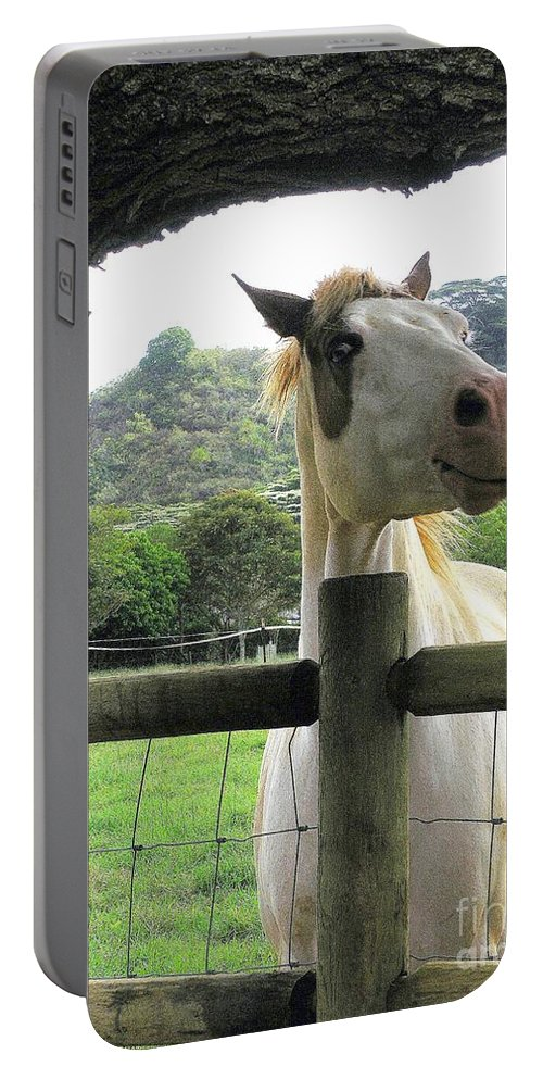 Animals Portable Battery Charger featuring the photograph Back Fence Gossip by Mary Deal