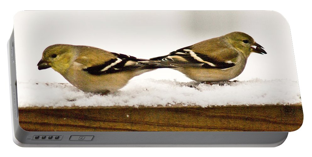 American Portable Battery Charger featuring the photograph Back To Back American Gold Finches by Douglas Barnett