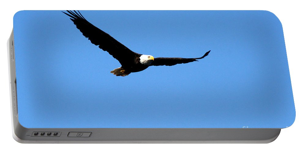 Eagle Portable Battery Charger featuring the photograph Bald Eagle II by Thomas Marchessault