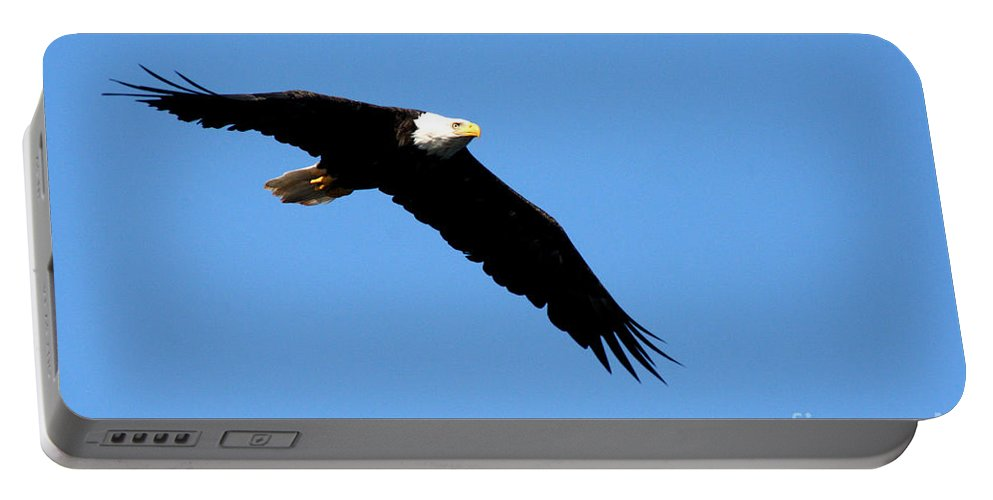 Eagle Portable Battery Charger featuring the photograph Bald Eagle IIi by Thomas Marchessault