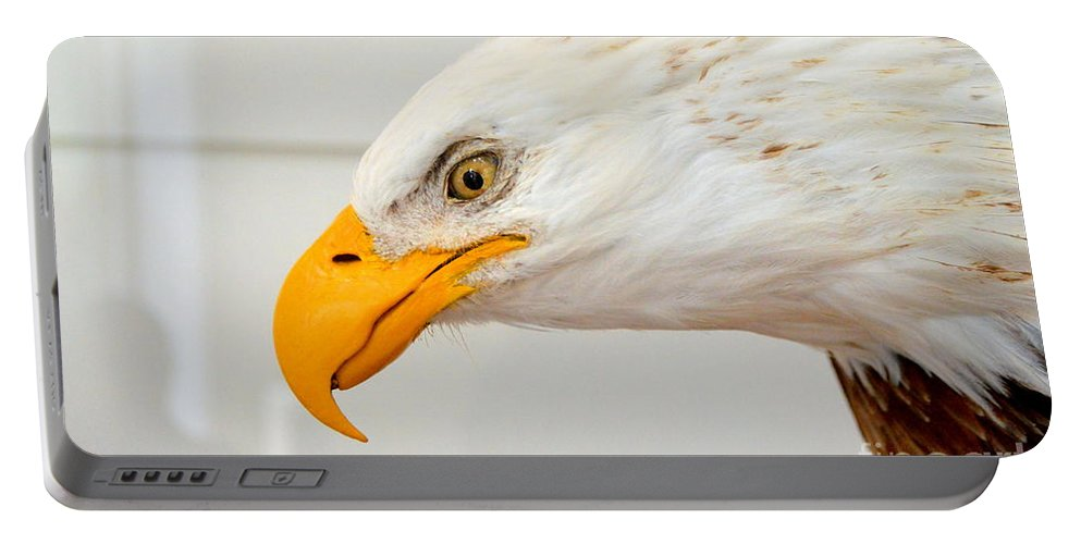 Bald Eagle Portable Battery Charger featuring the photograph Bald Eagle by Suranga Basnagala