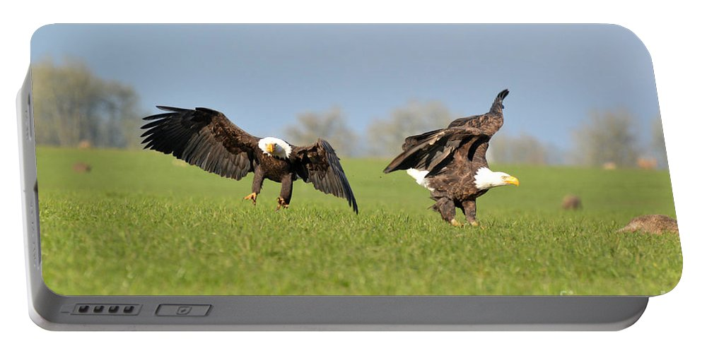 Eagles Portable Battery Charger featuring the photograph Bald Eagles by Out West Originals