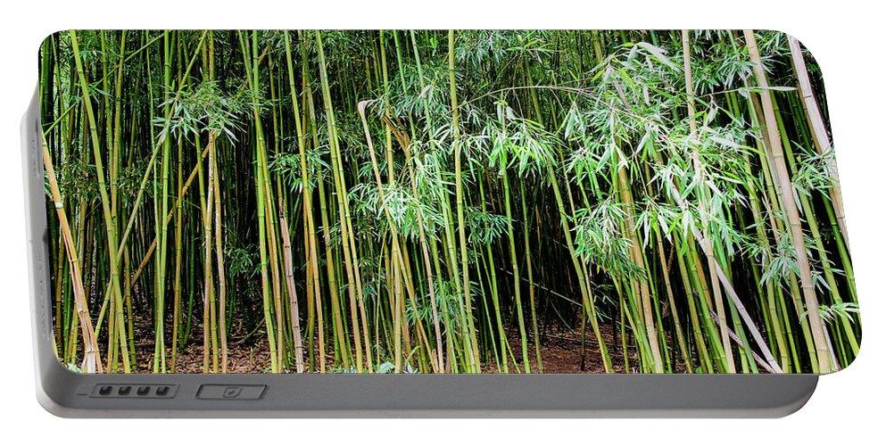 Bamboo Chimes Portable Battery Charger featuring the photograph Bamboo Chimes, Waimoku Falls Trail, Hana Maui Hawaii by Michael Bessler