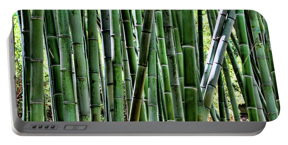 Cactus Portable Battery Charger featuring the photograph Bamboo by Chuck Kuhn