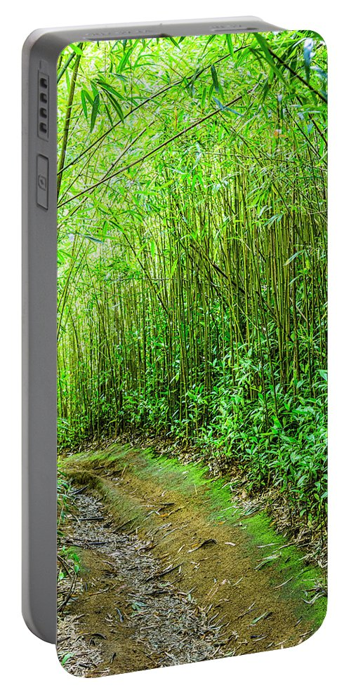 Bamboo Trail Portable Battery Charger featuring the photograph Bamboo Forest Trail by Kelley King