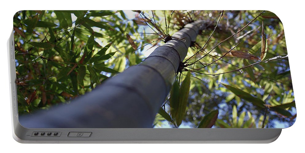 Bamboo Portable Battery Charger featuring the photograph Bamboo by Robert Meanor