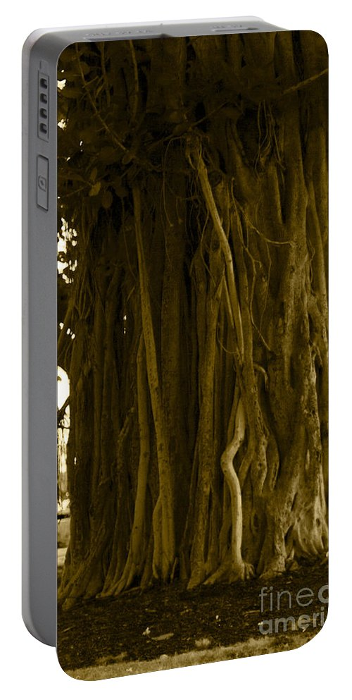 Sepia Portable Battery Charger featuring the photograph Banyan Surfer - Triptych Part 1 Of 3 by Sean Davey