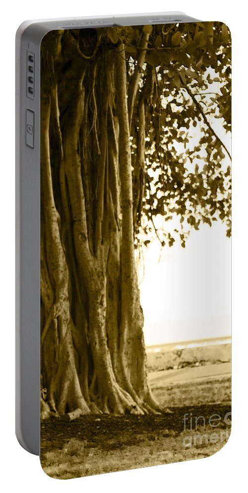Sepia Portable Battery Charger featuring the photograph Banyan Surfer - Triptych Part 2 Of 3 by Sean Davey