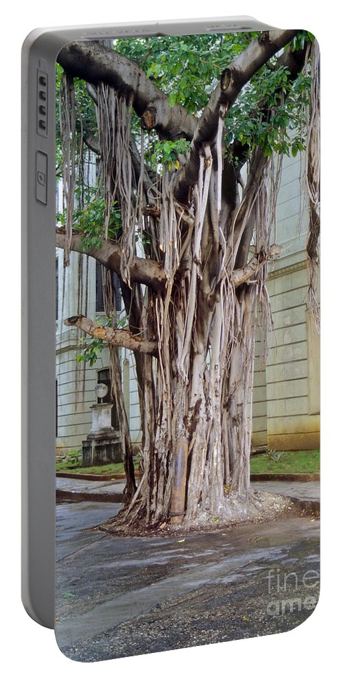 Havana Cuba University Campus Banyan Tree Trees Portable Battery Charger featuring the photograph Banyan Tree by Bob Phillips