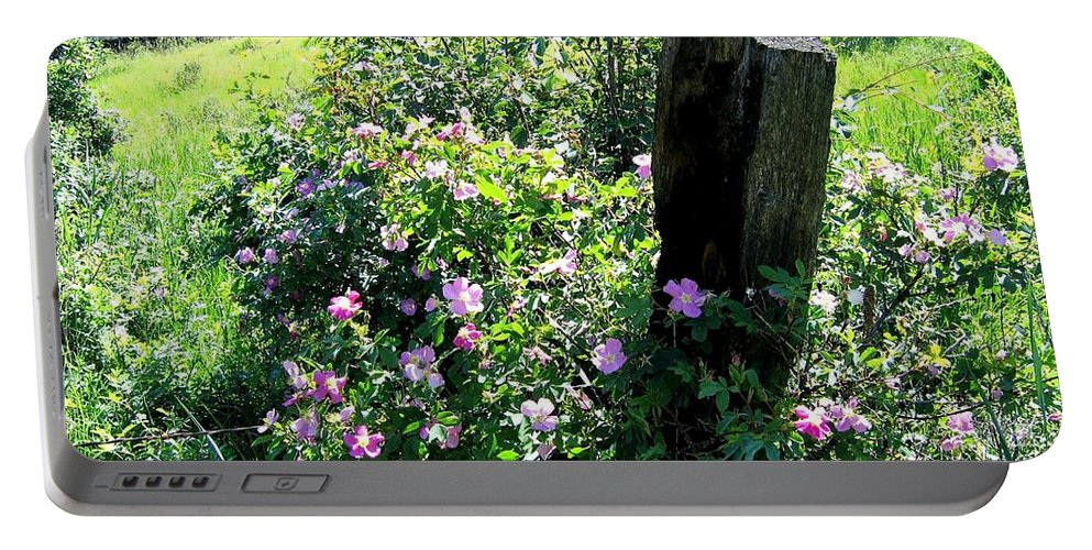 Wild Roses Portable Battery Charger featuring the photograph Barbed Wire And Roses by Will Borden