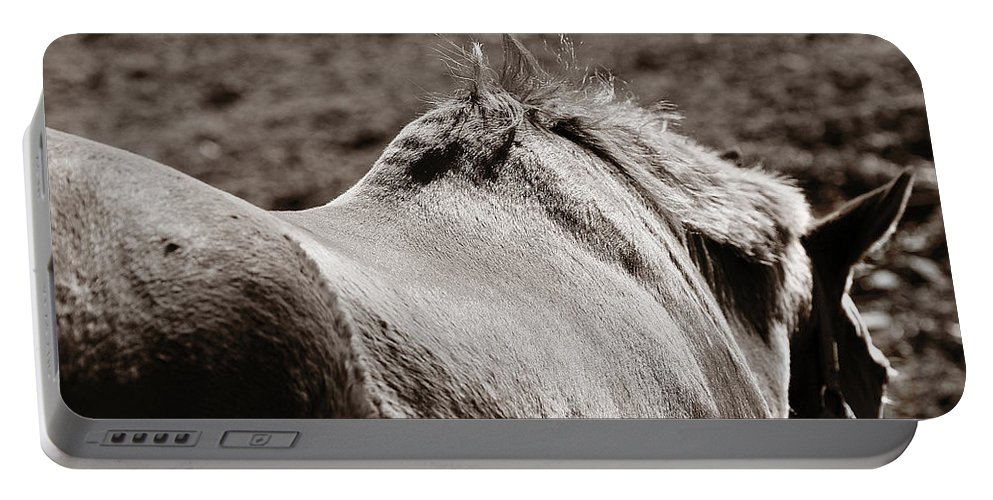 Horse Portable Battery Charger featuring the photograph Bareback by Angela Rath
