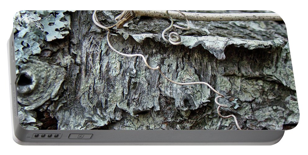 Tree Portable Battery Charger featuring the photograph Bark - Lichen - Cat Brier Tendrils by Mother Nature