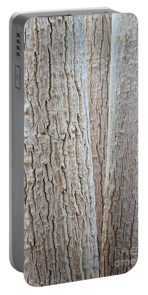 Plant Portable Battery Charger featuring the photograph Bark, Moringa Tree by Inga Spence