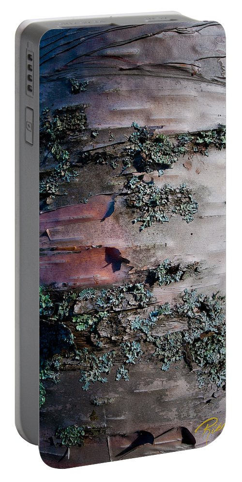 Autumn Portable Battery Charger featuring the photograph Bark by Rikk Flohr
