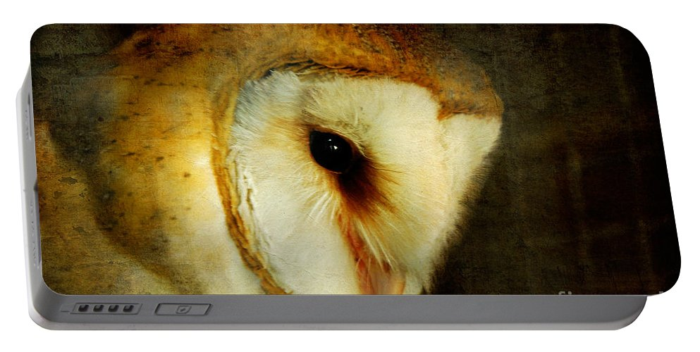 Owl Portable Battery Charger featuring the Barn Owl by Lois Bryan