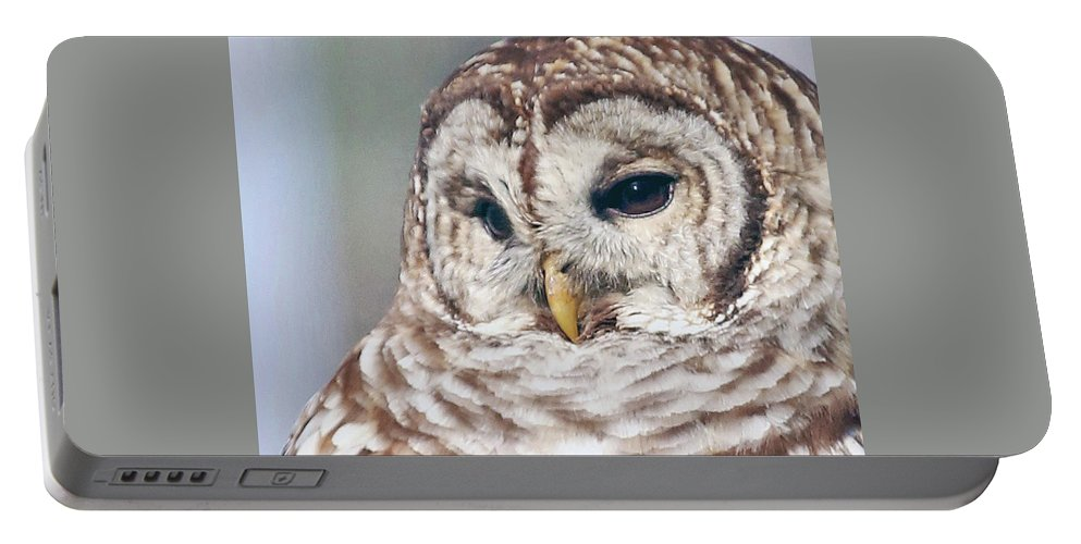 Owl Portable Battery Charger featuring the photograph Barred Portrait by Gina Fitzhugh