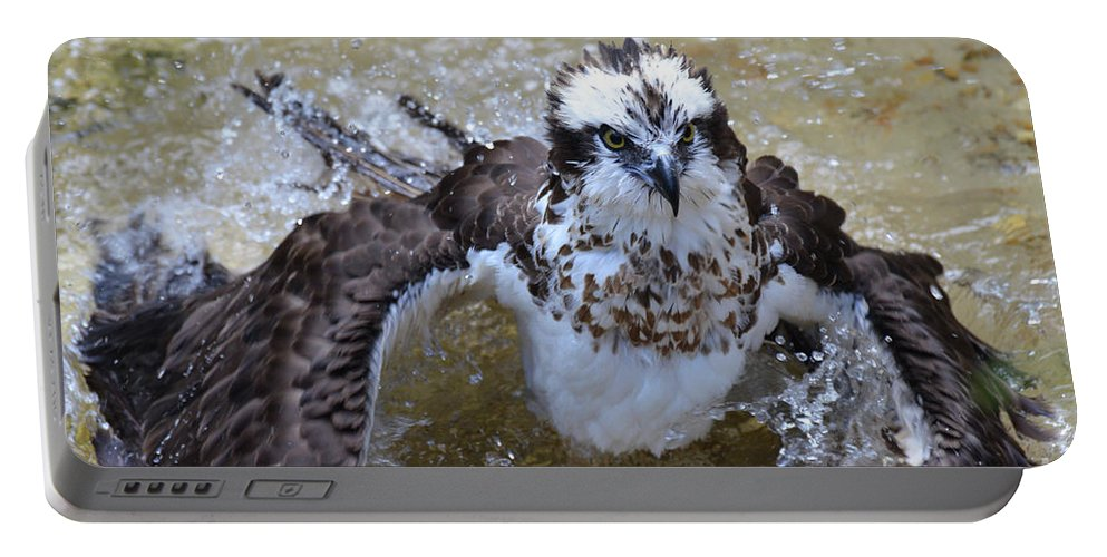 Bathing Portable Battery Charger featuring the photograph Bathing Osprey Bird Splashing About by DejaVu Designs