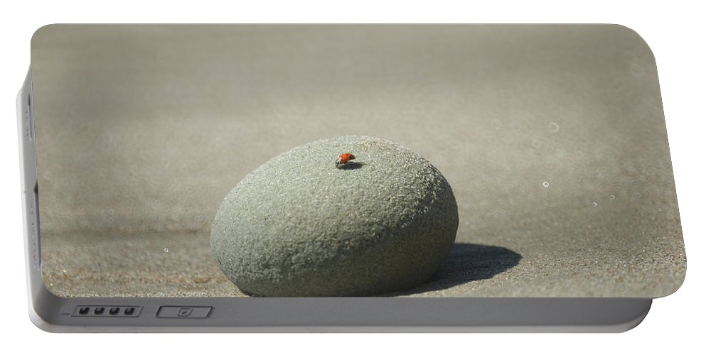 Ladybugs Portable Battery Charger featuring the photograph Beach Bug by Ernie Echols