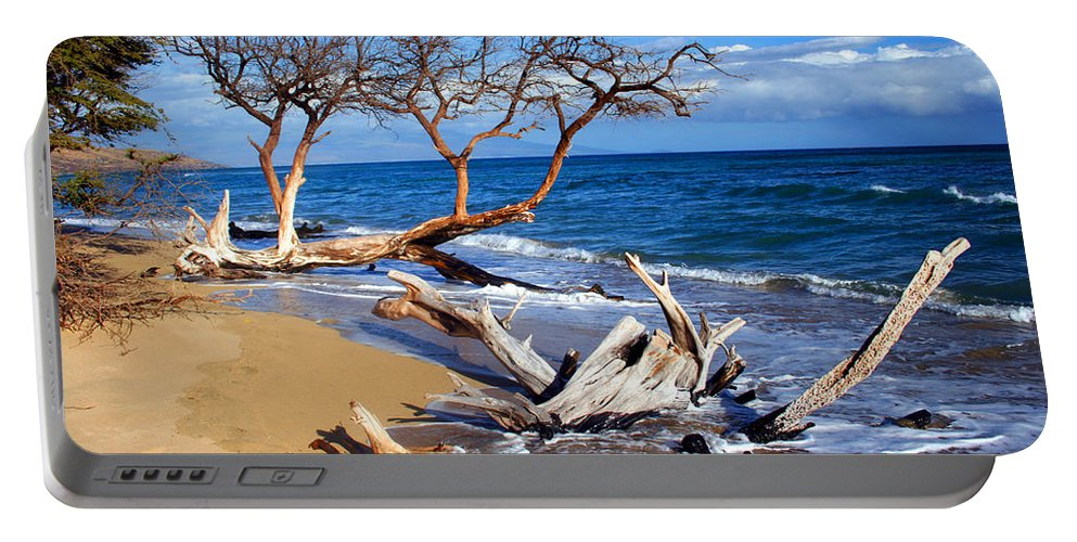 Beach Portable Battery Charger featuring the photograph Beach Driftwood Fine Art Photography by James BO Insogna