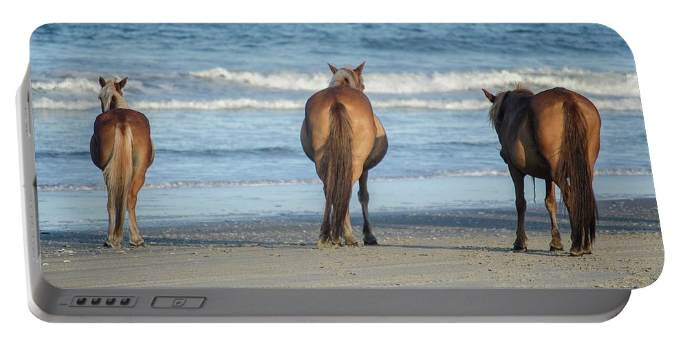 Horse Portable Battery Charger featuring the photograph Beach Horses by Mike Winner