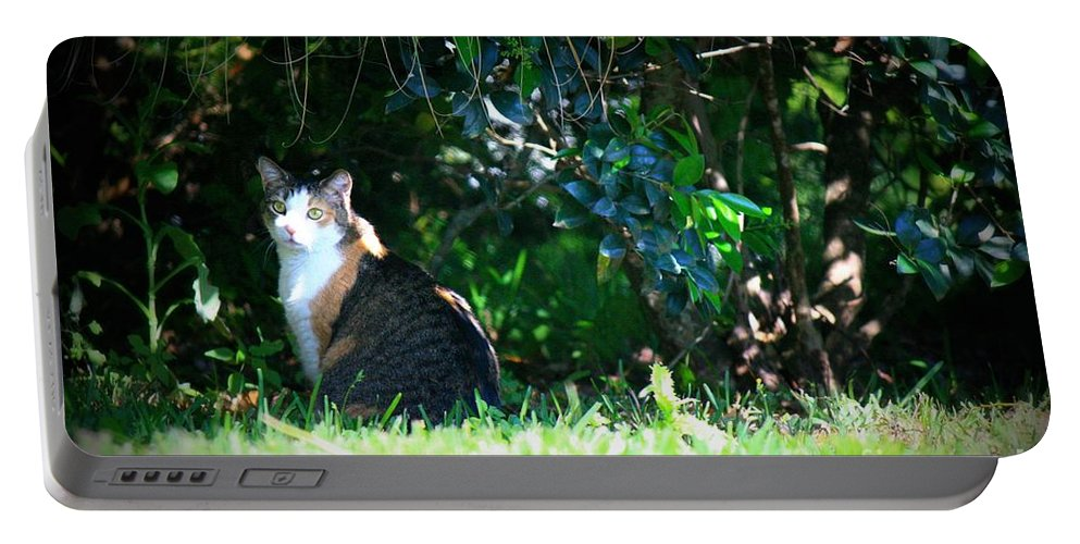 Cat Portable Battery Charger featuring the photograph Beach Side Shade by Mandy Shupp
