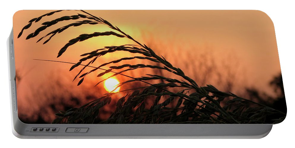 Beach Portable Battery Charger featuring the photograph Beach Sunset by Carolyn Marshall