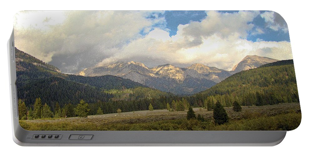 Bear Portable Battery Charger featuring the photograph Bear Country by Terry Anderson