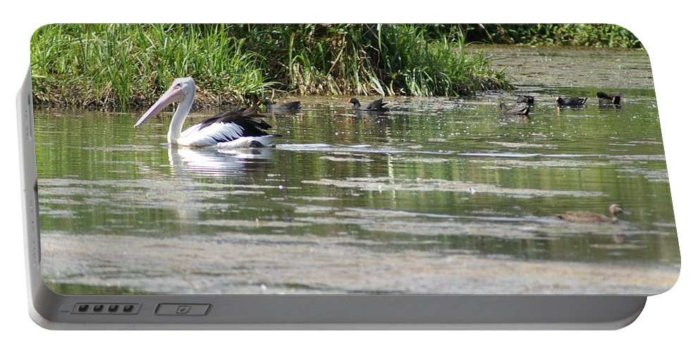 Pelican Portable Battery Charger featuring the photograph Beautiful Pelican by Brian Leverton