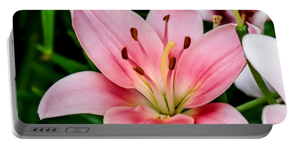 Beautiful Pink Lily Portable Battery Charger featuring the photograph Beautiful Pink Lily by Cynthia Woods