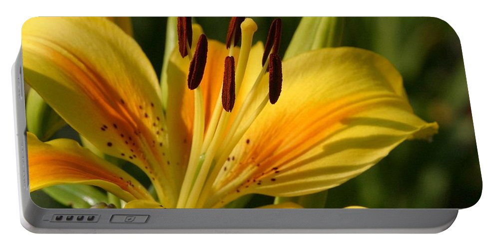 Yellow Portable Battery Charger featuring the photograph Beautiful Yellow Lily by Taiche Acrylic Art