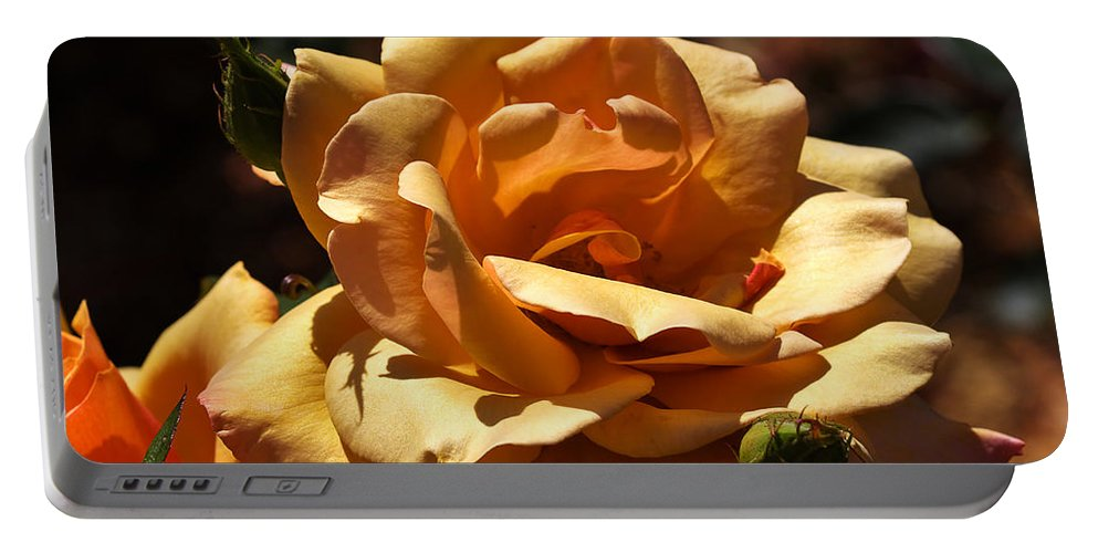 Rose Portable Battery Charger featuring the photograph Beautiful Yellow Rose Belle Epoque by Louise Heusinkveld