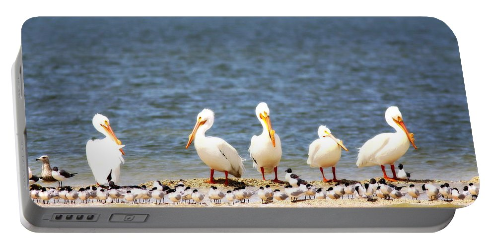 Pelicans Portable Battery Charger featuring the photograph Beauty - 8831-001 by Travis Truelove