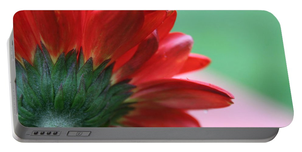 Flowers Portable Battery Charger featuring the photograph Beauty From Behind by Linda Sannuti