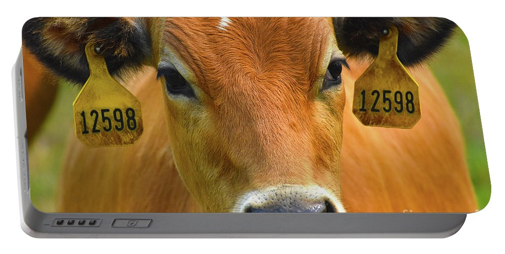 Cow Portable Battery Charger featuring the photograph Beauty Mark by Susan Evans