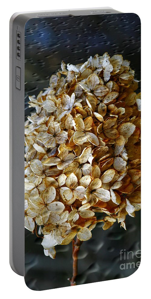 Flower Portable Battery Charger featuring the photograph Beauty Of Old by Deborah Benoit